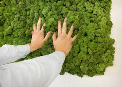 Pflanzen für ein natürliches Ambiente